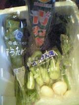 生協で配達された生鮮野菜08.05.08