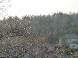 窓から見える景色(09.04.07)