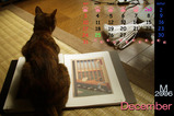 猫カレンダー2006.12