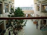 福井県立病院二階から、玄関を見下ろしてみた