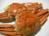 越前蟹(セイコガニ)
