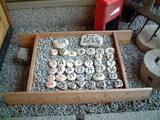 入り口にあった石のカレンダー