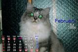 猫カレンダー2006.02