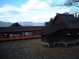 宮島厳島神社で
