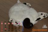 猫のカレンダー2006.09