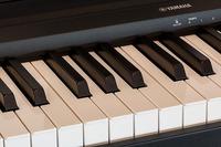 piano-385467_640