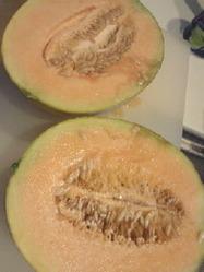 melon_130808_02