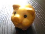pig_090830