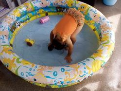 pool_140711
