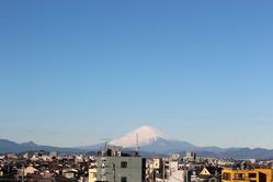 fuji_20130103