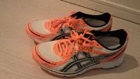 shoes_120206_01