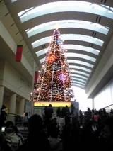 tree_081223_02