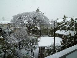 snow_130114