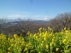 azumayama_130112_02