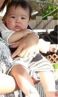 baby_111114_04