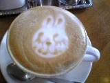 cafe_090830