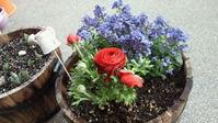 flower_120315