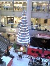 tree_081223_01