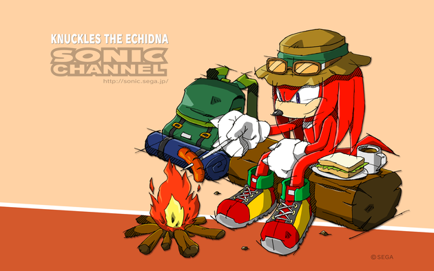 2016_09_knuckles