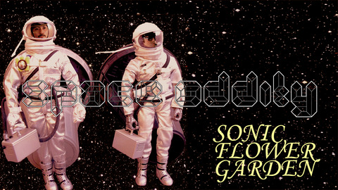space-oddity-sfg