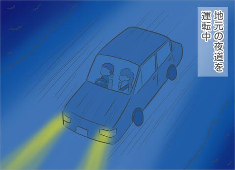 地元の夜道を運転中