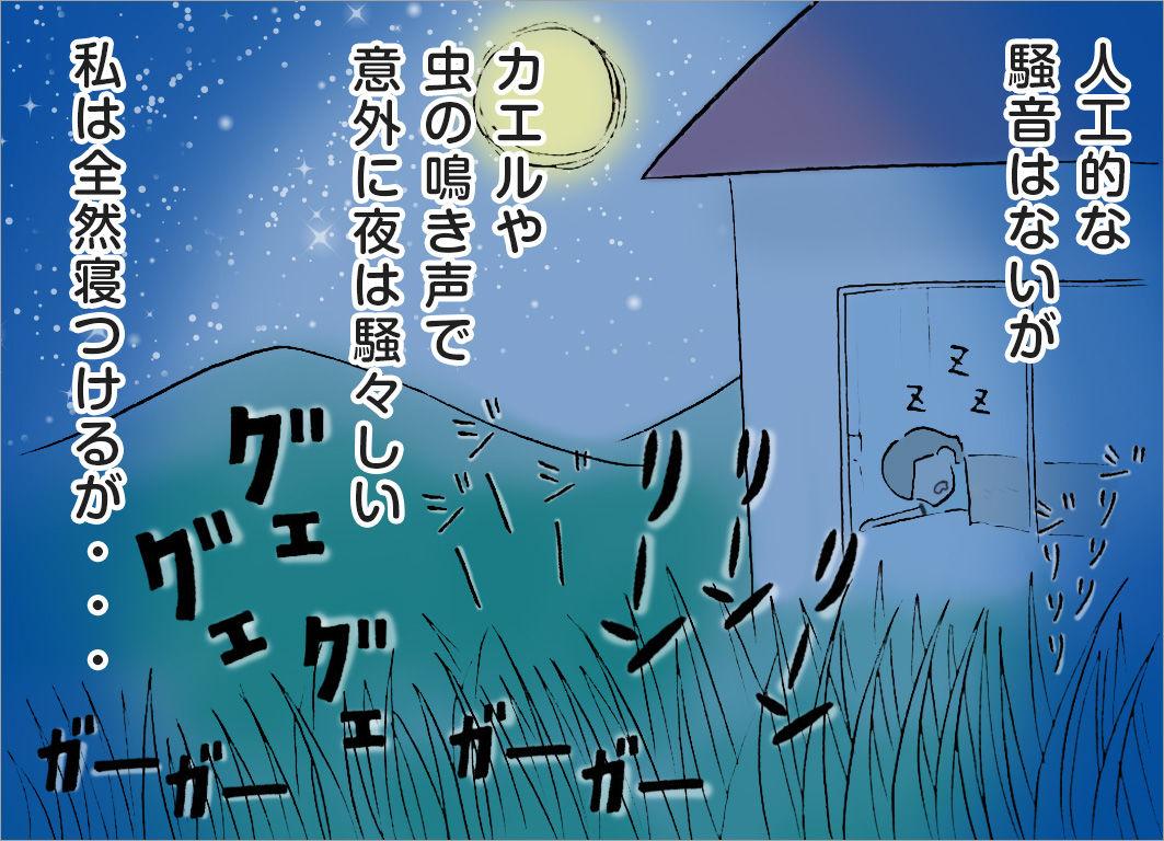 人工的な騒音はないが、カエルや虫の鳴き声で意外に夜は騒々しい。私は全然寝つけるが・・・
