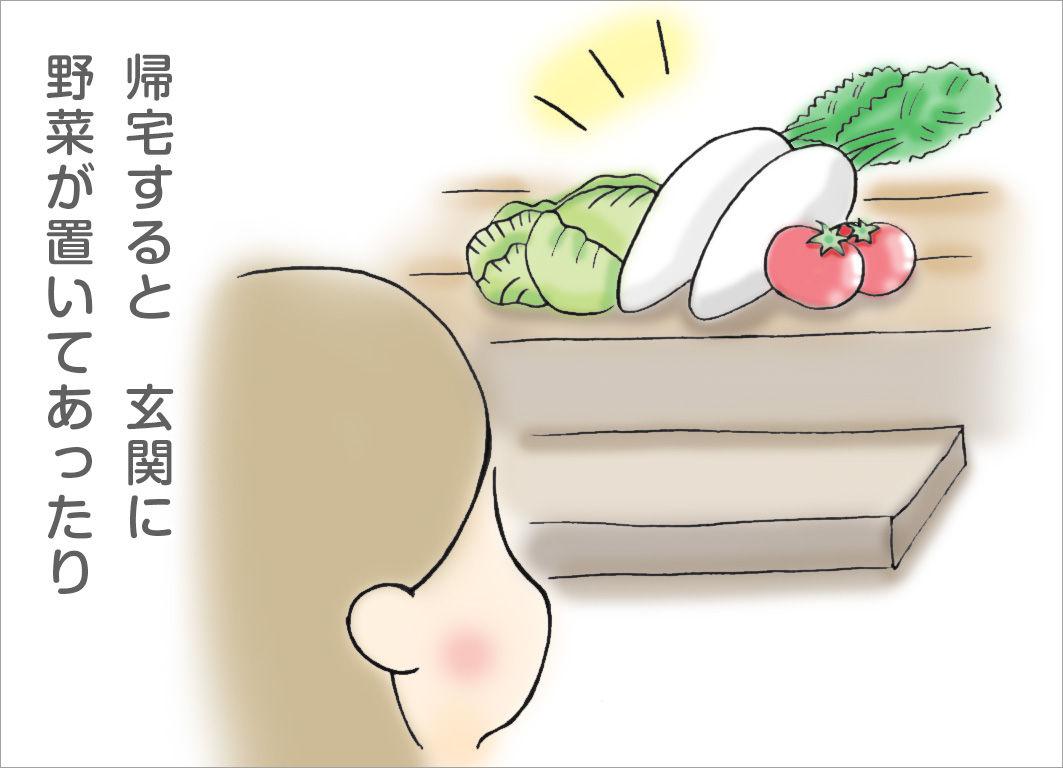 帰宅すると、玄関に野菜が置いてあったり