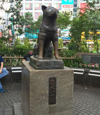 【衝撃】100歳のお婆さんが女学校時代、餌をあげていた渋谷駅の前にいた犬が実は……wwww