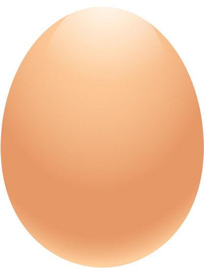 客「卵を袋の下に入れるな!!」 店員「下に入れた方が割れにくいだろ…」 正しいのは?