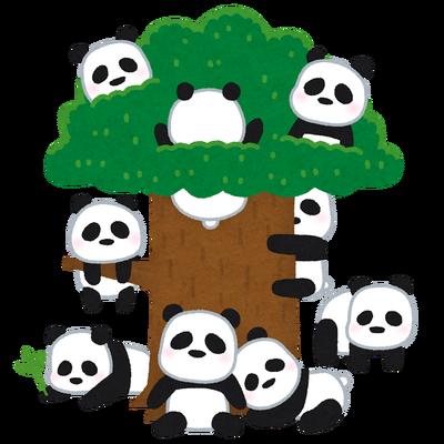 【画像】中国にパンダのなる木がある!?可愛すぎてヤバイwwww
