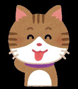 ワイ社畜「ハァハァ疲れたンゴ・・・(年収350万円)」猫系YouTuber「」