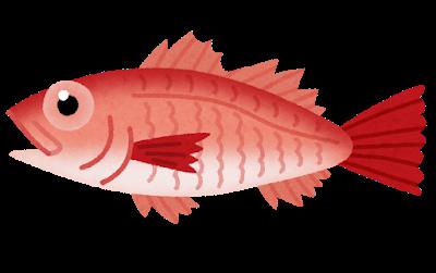のどぐろとかいうクソ美味魚