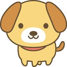 米ユナイテッド機内で子犬を頭上に収納させられ…犬は死亡(∪^ω^)……