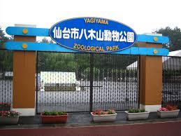 【画像】仙台の八木山動物園のスタッフが書いた質問カードの返答が素晴らしすぎる件wwww