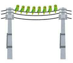 息子「パパー、何で鳥は電線に止まっても感電しないのー?」