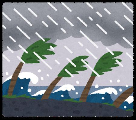 台風の中で踏ん張るウミネコの勇姿をごらんくださいwwwwwwww