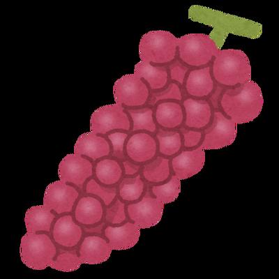 【画像】ブドウが美味しいまま長持ちする保存方法がこちらwwww