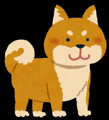 中国の飼い主に捨てられた柴犬デンデン ネットオークションで大人気にwwwwwwwww