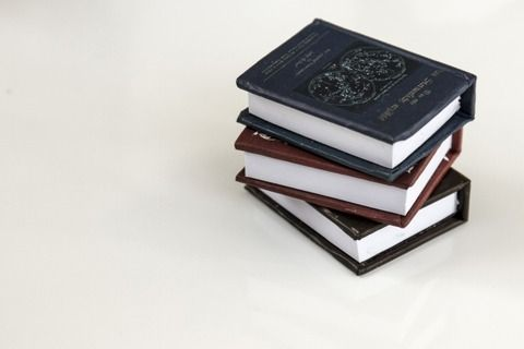 ワイ「釣り始めたい 本で調べよう」 釣り入門本「サビキが~アタリで~そこでアワセを~」