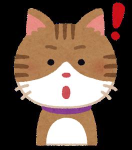 【画像】変わった顔の猫が発見される