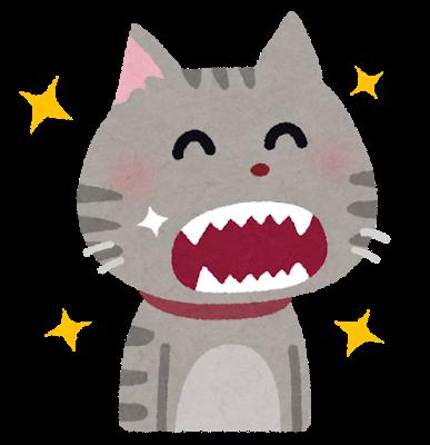彡(^)(^)「お手!!!!」猫「」ガブッ