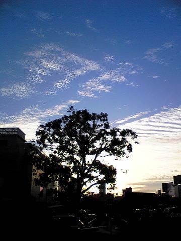 ある朝の空
