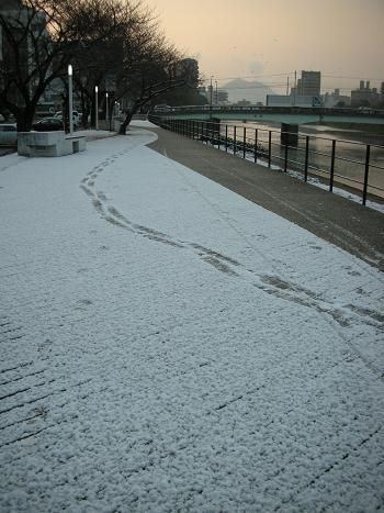 雪がうっすら