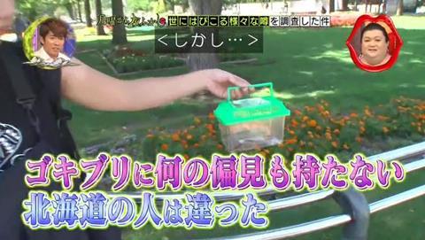 北海道 ゴキブリ 平気 感動 (45)