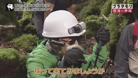 ブラタモリ 富士の樹海 第二回 千葉達郎さん