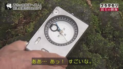 ブラタモリ 富士の樹海(青木ヶ原樹海 )(559)