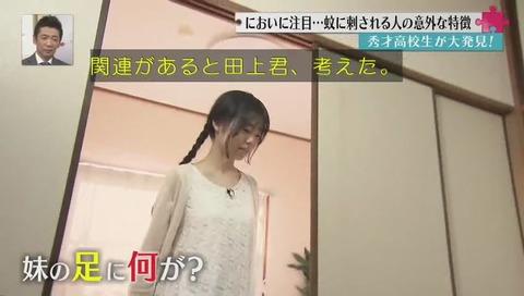 京都教育大学附属 田上大喜 蚊の研究