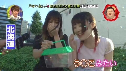 北海道 ゴキブリ 平気 感動 (70)