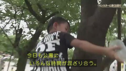NHKドキュメント72 ポケモンGO 錦糸公園 (2559)