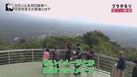 ブラタモリ 富士の樹海(青木ヶ原樹海 )(345)